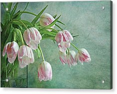 Waiting For Spring Acrylic Print by Claudia Moeckel