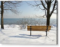 Acrylic Print featuring the photograph Waiting For Spring by Laurel Best
