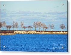Waiting For Summer - Trees At The Edge Acrylic Print by Mary Machare