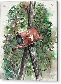 Waiting For The Mail Acrylic Print by Stephanie Sodel