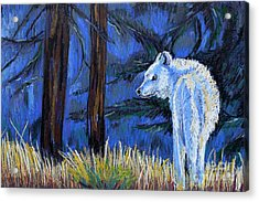 Waiting For The Pack Acrylic Print by Harriet Peck Taylor