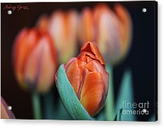 Waitning For The  Spring. 2013. Acrylic Print