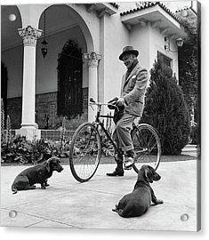 Waldemar Schroder On A Bicycle With Two Dogs Acrylic Print