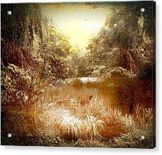 Walden Pond Acrylic Print by Maggie Vlazny