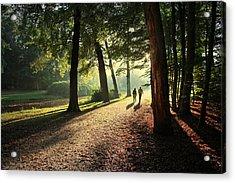 Walk Acrylic Print