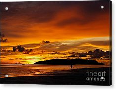 Walk In Paradise  Acrylic Print by Gary Bridger