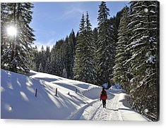 Walk In Sunny Winter Landscape Acrylic Print by Matthias Hauser