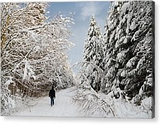 Walk In The Winterly Forest With Lots Of Snow Acrylic Print by Matthias Hauser