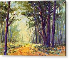 Walk In The Woods 5 Acrylic Print
