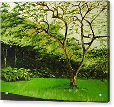 Walk In Waimea Valley Acrylic Print by Sherry Robinson
