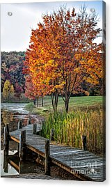 Walk Into Fall Acrylic Print