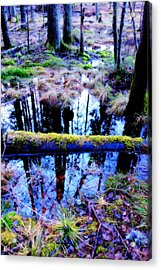Walk Right Into The Nature's Fairytale With Me  Acrylic Print by Hilde Widerberg