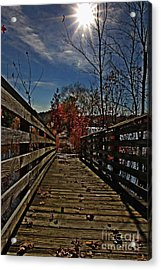 Walk The Line Acrylic Print by Scott Allison