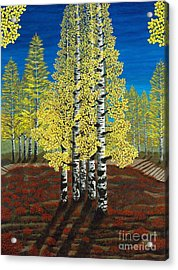 Walk Through Aspens Triptych 2 Acrylic Print by Rebecca Parker