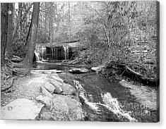Walk To The Waterfall Acrylic Print by Carol Groenen
