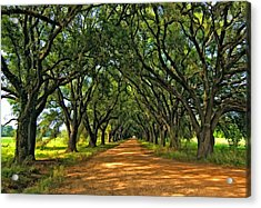 Walk With Me Paint Version Acrylic Print by Steve Harrington