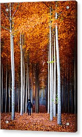 Walking Among Giants Acrylic Print