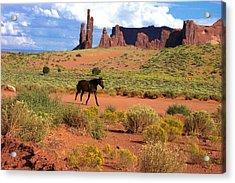 Walking Down The Road Acrylic Print by Pamela Schreckengost