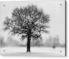 Walking In A Winter Wonderland Acrylic Print by Ian Hufton