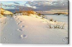 Acrylic Print featuring the photograph Walking In Destin by JC Findley