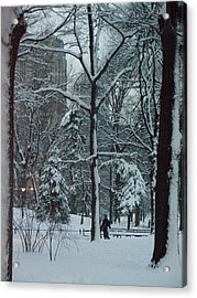 Walking In Snowy Central Park At Dusk Acrylic Print by Winifred Butler