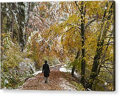 Walking Into Winter - Beautiful Autumnal Trees And The First Snow Of The Year Acrylic Print by Matthias Hauser