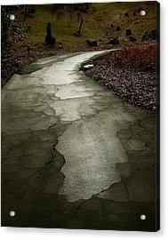 Walking Meditation Acrylic Print