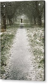 Walking On The Winter Path Acrylic Print by Svetlana Sewell