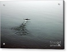 Acrylic Print featuring the photograph Walking On Water by Randi Grace Nilsberg
