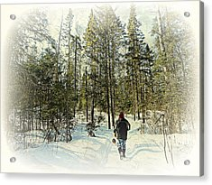 Walking The Dog On A Snowy Trail Acrylic Print by Dianne  Lacourciere