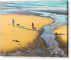 Walking The Dogs Acrylic Print