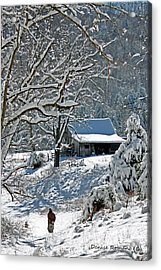 Walking Toward The Barn Acrylic Print
