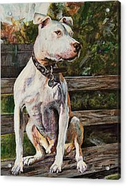 Wallace The Great Acrylic Print by Clara Yori