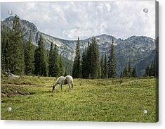 Wallowas - No. 2 Acrylic Print