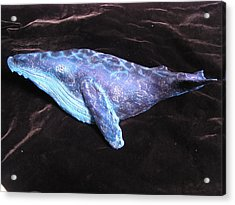Wally The Whale Acrylic Print by Dan Townsend