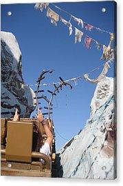 Walt Disney World Resort - Animal Kingdom - 121214 Acrylic Print