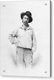 Walt Whitman Frontispiece To Leaves Of Grass Acrylic Print