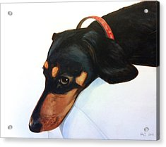 Walter - Waiting For Momma Acrylic Print