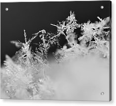 Waltz Of The Snowflakes Acrylic Print by Rona Black