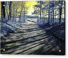 Wandering Alice Is Wondering Acrylic Print by Luke Moore