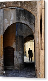 Acrylic Print featuring the photograph Wandering Minstrall by John Jacquemain