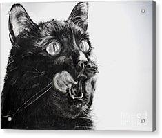 Wanting Acrylic Print by Valerie  Bruzzi