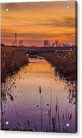 Warm Reflection Acrylic Print by Bruno Santos
