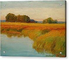 Warm Sunset On The Bog Acrylic Print by Nicolas Bouteneff