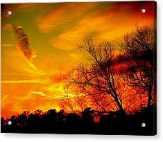 Warm Winter Sunset  Acrylic Print by Walter  Holland