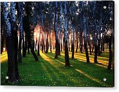Warming Up The Land Acrylic Print by Daniel Zrno