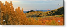 Wasatch Gold Acrylic Print