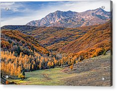Wasatch Moutains Utah Acrylic Print