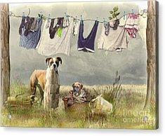 Wash Day Acrylic Print by Trudi Simmonds