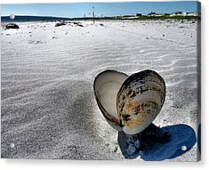 Acrylic Print featuring the photograph Washed Ashore by Janice Drew